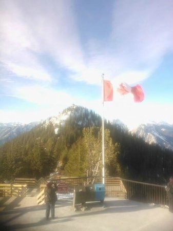 Hostel Bear: The Canadian Flag as seen from the top of the Banff Gondola
