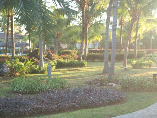 Melia Cayo Santa Maria: Gorgeous sunny mornings