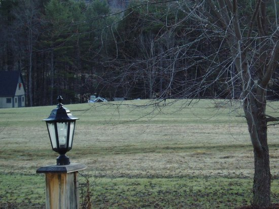 Antiqued Inn Time B&B: Front pasture