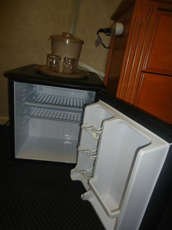 Banff Park Lodge Resort and Conference Centre: Smaller than average fridges