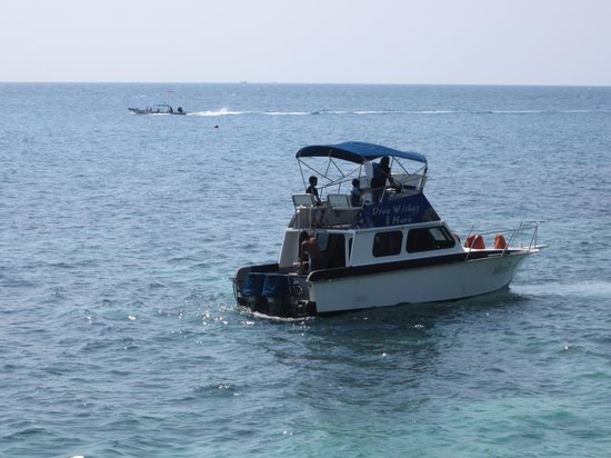 Dive Wishes & More: Dive Wishes Speedboat, Koh Tao, Thailand