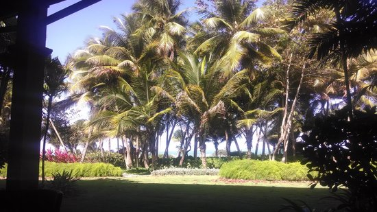 The St. Regis Bahia Beach Resort: from our porch