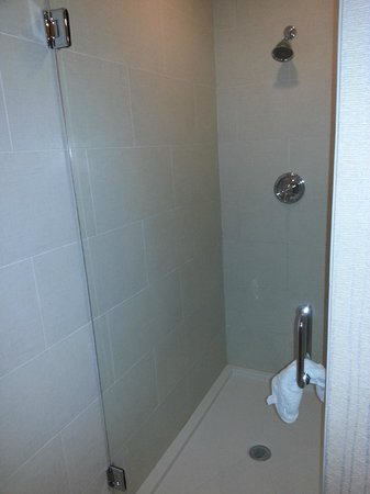 Town & Country Inn and Suites: ginormous shower