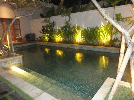 The Samaya Bali Seminyak: Our villa pool