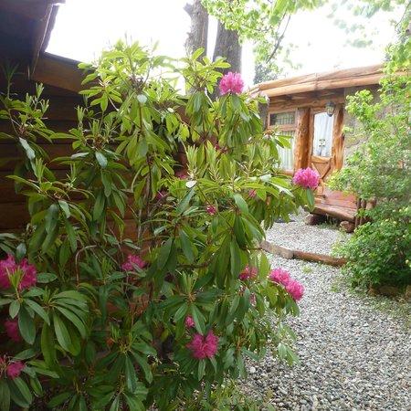 Cabanas La Deseada: corredores de piedritas y muy floridos