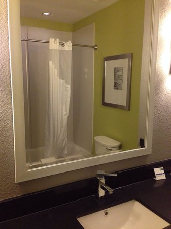 Holiday Inn Express Hotel And Suites Carlisle Harrisburg Area: Shower