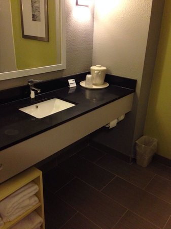 Holiday Inn Express Hotel And Suites Carlisle Harrisburg Area : Bathroom