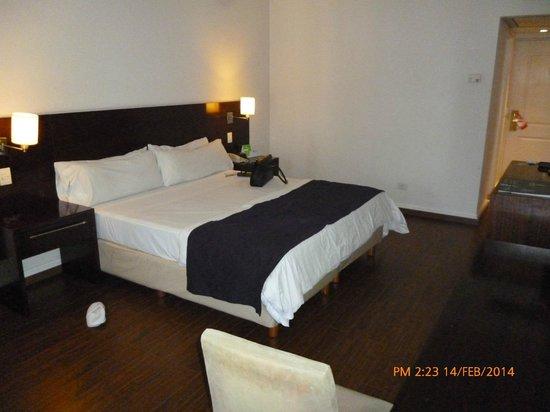 Dazzler San Martin: habitacion 1106