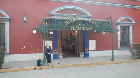 Hotel Hacienda Flamingos: Entrance