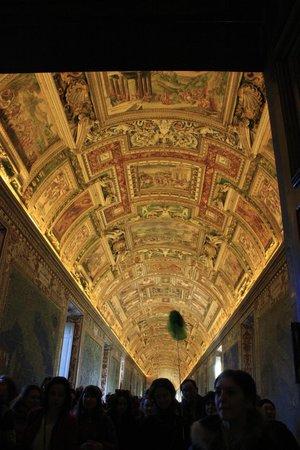 Vatikanische Museen (Musei Vaticani): Cieling inside the Vatican museum