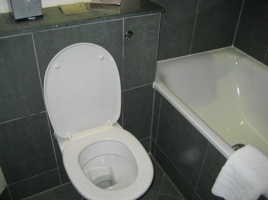 Park Plaza Cardiff: Toilet