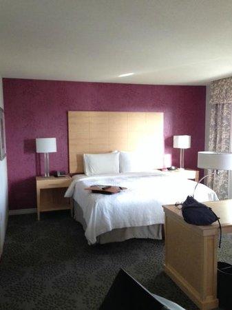 Hampton Inn & Suites by Hilton - Miami Brickell Downtown: Quarto 1