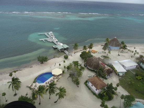 Blackbird Caye Resort: Blackbird aus der Luft (Bar, Restaurant, Pool...)