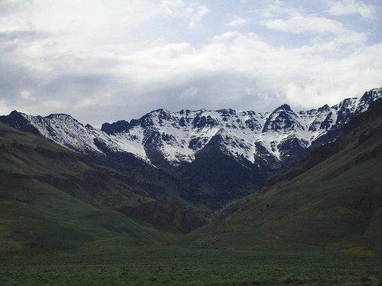 Rhojo's: Montañas Burns