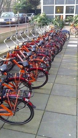 Stayokay Hostel Amsterdam Vondelpark: Bikes