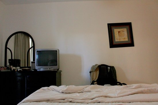 The Tropical at Lifestyle Holidays Vacation Resort: TV and broken/crooked picture