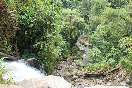 The Lost Waterfalls-Boquete: From the top of the second waterfall