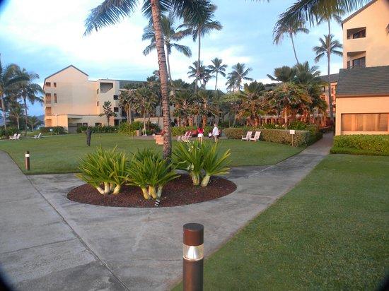 Courtyard Kaua'i at Coconut Beach: Marriott at Coconut