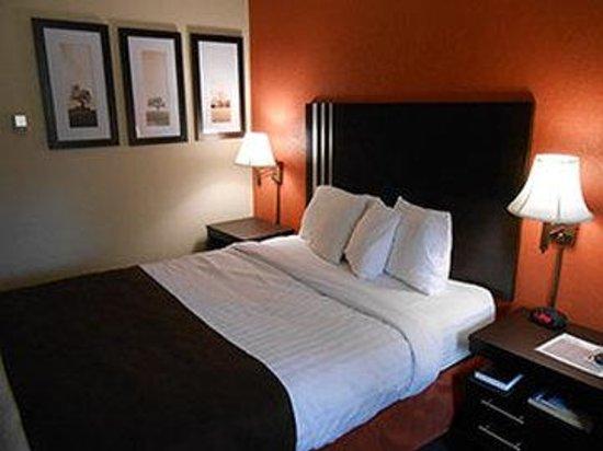 AmericInn Lodge & Suites Cloquet: Queen