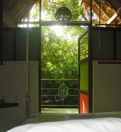 Genesis Eco-Oasis: Birdhouse: Morning View from the hanging bed in Birdhouse Eco-suite $89 usd.