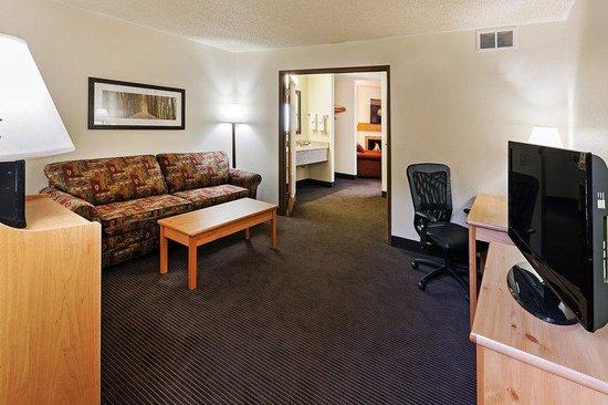 AmericInn Lodge & Suites Sayre : Guest Room