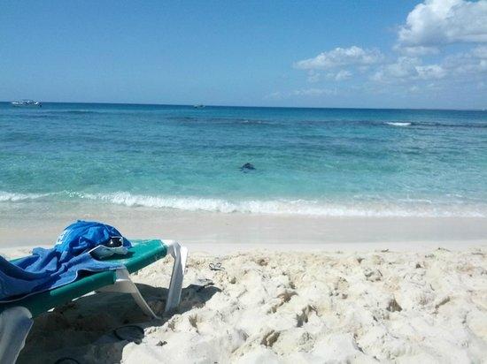 Viva Wyndham Dominicus Beach: il mare cristallino