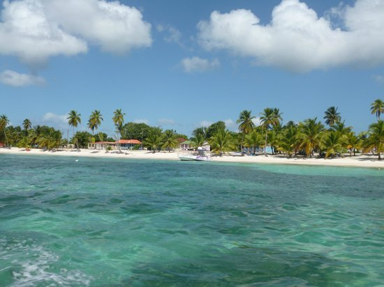Viva Wyndham Dominicus Beach: escursioni