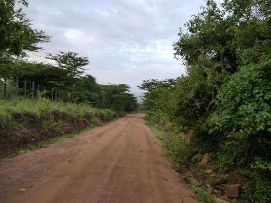 Mara Sopa Lodge: Road to The Lodge