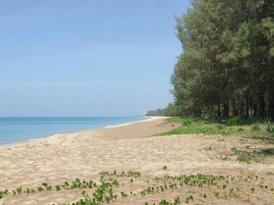 Phuket Airport Hotel: Mai Khao beach 10 mins drive