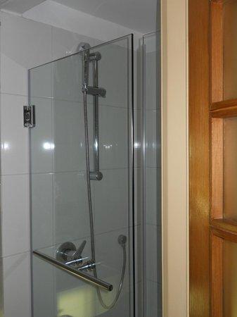 Novotel Santiago Vitacura : Shower