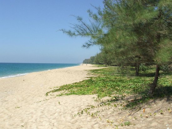 Phuket Airport Hotel: Mai Khao Beach goes for miles and is mostly deserted