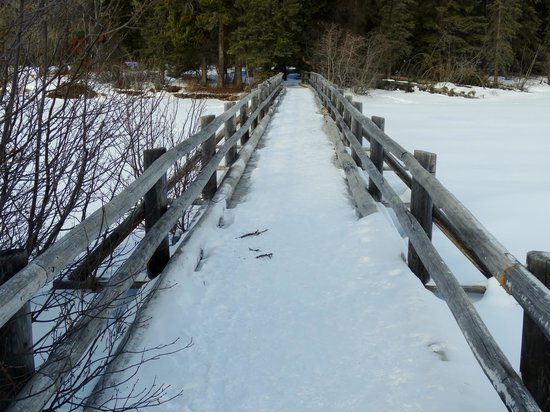 Pyramid and Patricia Lakes: Bridge to the Island