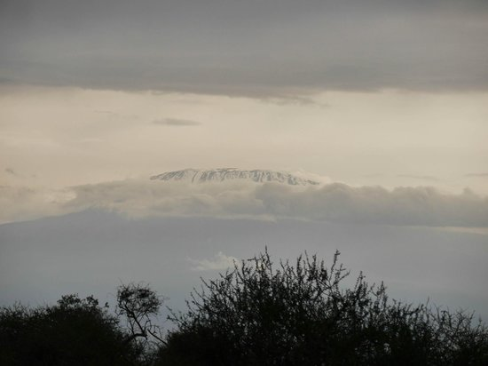 Amboseli Sopa Lodge: View from the from the Lodge