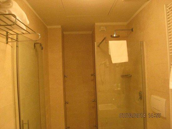 Ca' Pozzo Inn : Bathroom (no bath, a shower only)