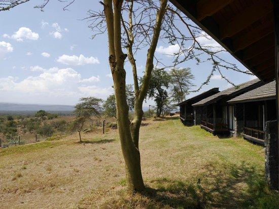 Lake Nakuru Lodge: View from the room
