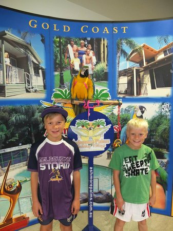 Ashmore Palms Holiday Village: Bird encounters in the conference centre