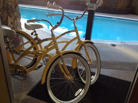 University Inn - A Staypineapple Hotel: Loaner bikes by the seasonal pool!