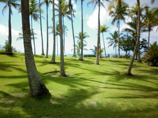 Rio da Barra Beach : Jardín de la pousada
