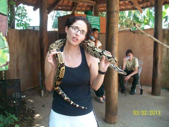 Cabanas Maria Belen : zoo de las aves
