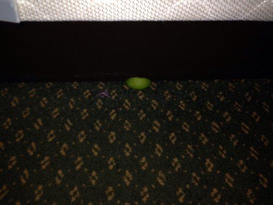 The Shawnee Inn and Golf Resort: Lime