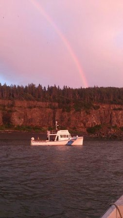 Top Of The Island Boat Tours Grand Manan