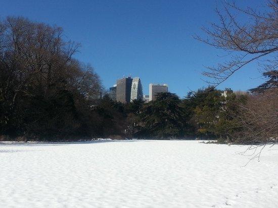 Shinjuku Gyoen National Garden : 雪と青空と高層ビル群