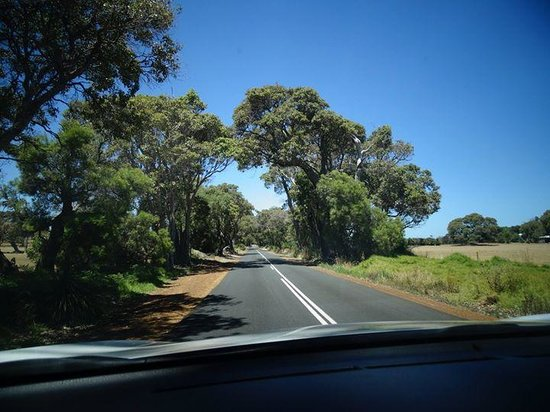 Caves Road: past farmland and pastures
