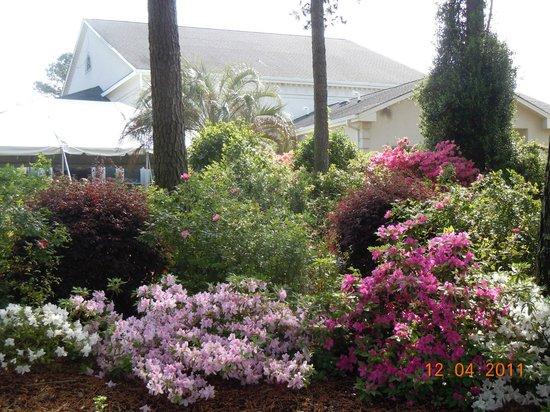 Brunswick Plantation Golf Resort: Belles fleurs