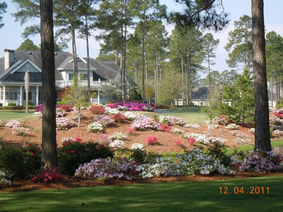 Brunswick Plantation Golf Resort: Arrangements floraux