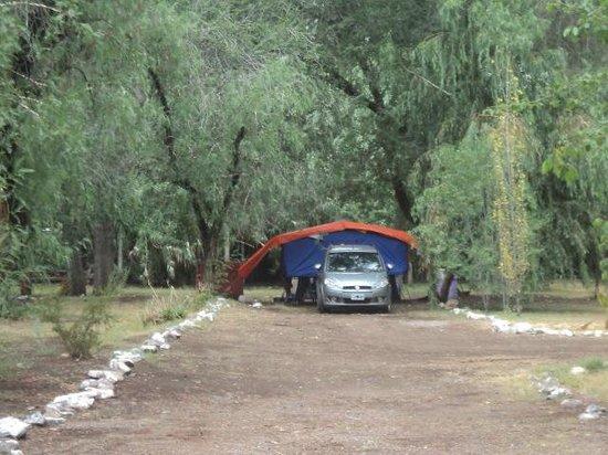 Camping El Mangrullo: sitios
