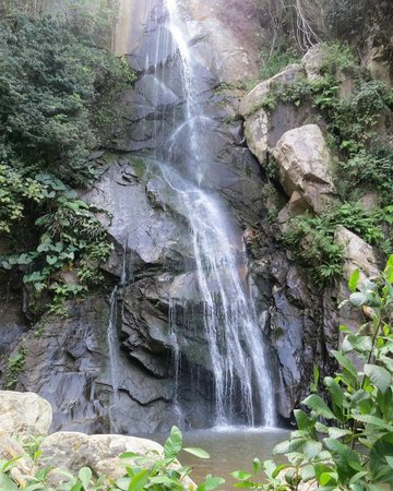Yelapa Waterfalls: Waterfall with a small reservoir to swin and take the picture