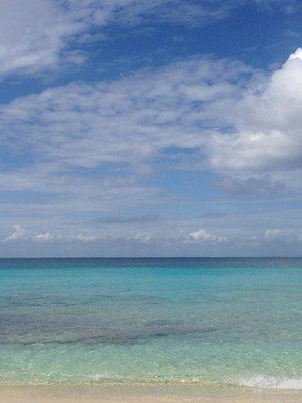 Playa Azul Golf, Scuba, Spa : View from my beach chair