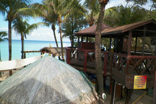 Bananarama Beach and Dive Resort: vista