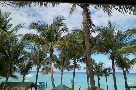 Bananarama Beach and Dive Resort: hermosa vista